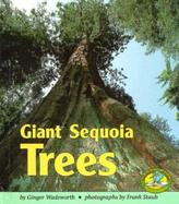 Giant Sequoia Trees cover