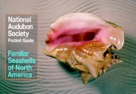 Familiar Seashells North America cover