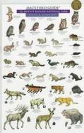 Mac's Field Guide to Mount Rainier National Park Mammals and Birds cover