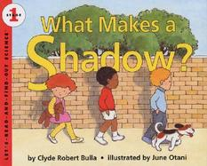What Makes a Shadow? cover