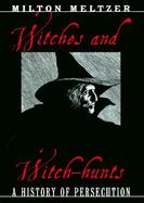 Witches and Witch-Hunts A History of Persecution cover
