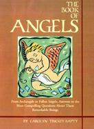 The Book of Angels cover