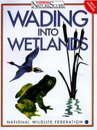 Wading Into Wetlands cover