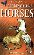 Field Guide to Horses cover